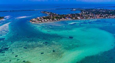 Rejtélyes betegség tizedeli a floridai korallokat