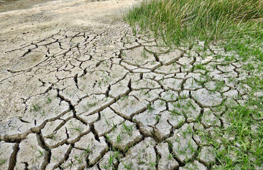 50-700 millió ember kerekedhet fel a talajromlás miatt