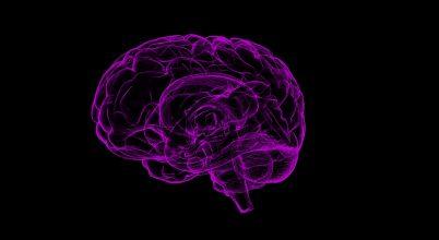 Megvan, miért lett aránytalanul nagy az agyunk