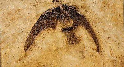 A dinoszauruszok nem is haltak ki!