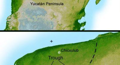 Viszonylag gyorsan visszatért az élet a Chicxulub-kráterbe