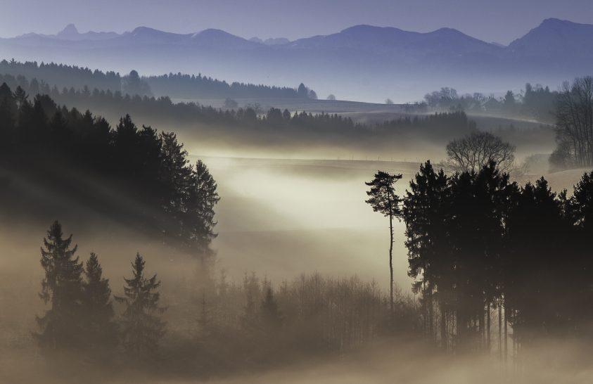 A nap képe: Napkelte egy ködös reggelen