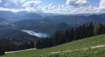 Alpesi szomszédolás
