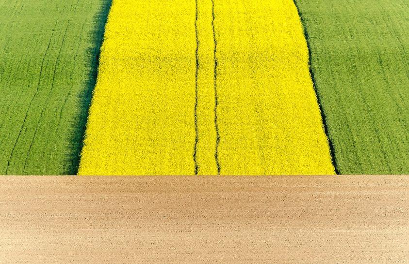 A nap képe: Tavaszi szántó