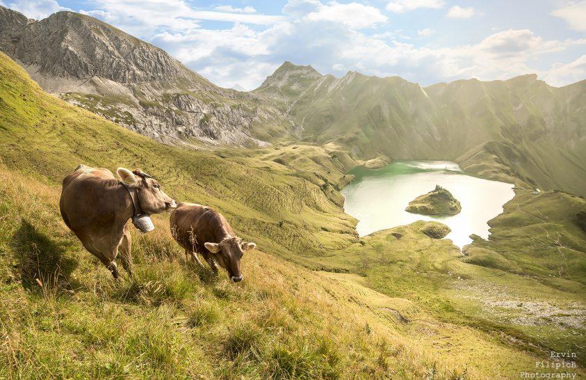 A nap képe: Alpesi idill