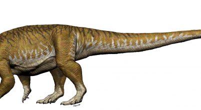 Hatalmas dinoszauruszcsontok írják át a triászról alkotott képet