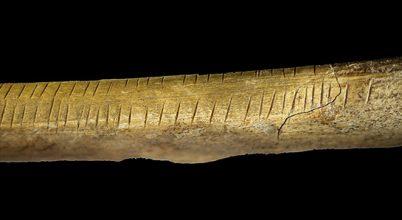 Rejtélyes rovátkákat találtak egy 30 ezer éves mamutbordán