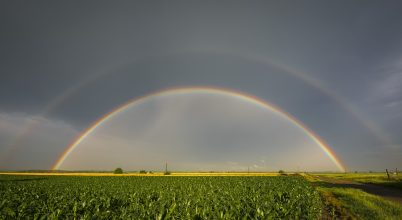A nap képe: Vihar után