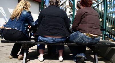 Új eredmények az elhízás kutatásában
