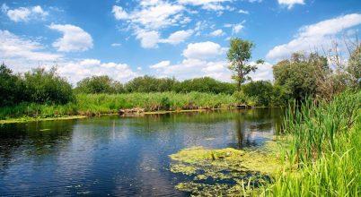 Baj van az európai vizek ökológiai állapotával