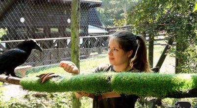 Egy állatgondozó hétköznapjai a Budakeszi Vadasparkban