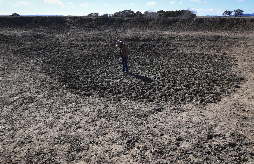 Állva mumifikálódott kenguru, szomjazó állatok, kiszáradt föld