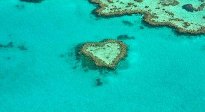 Gyógyulni kezdett a Nagy-korallzátony