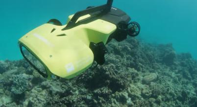 Robottal vadásznának a korallpusztítóra