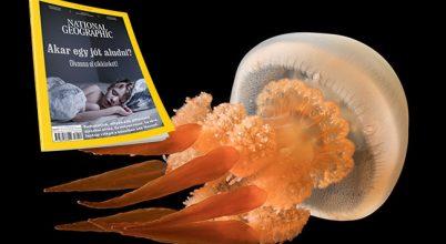 Hamarosan megjelenik a National Geographic legújabb száma
