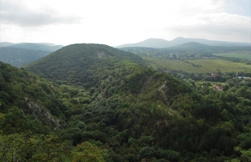 Instant túra és terepfutás a Budai-hegységben és a Pilisben