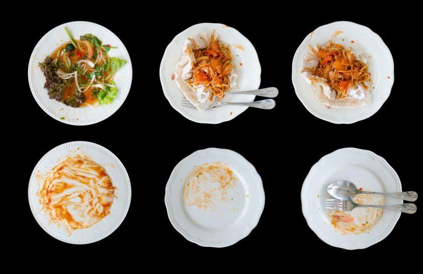 Észszerűség a táplálkozásban és az élelmiszergazdálkodásban