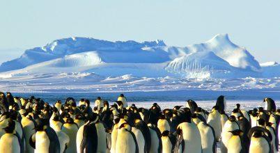 Három ország miatt kerülhet veszélybe az Antarktisz