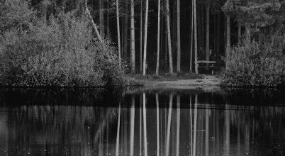 A nap képe: A természet békéje
