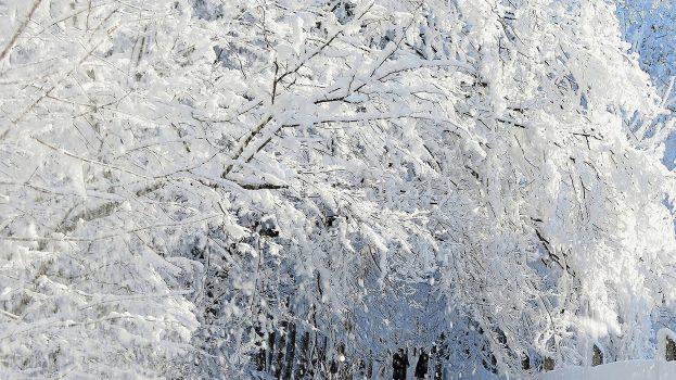 A tél varázsa