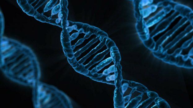 Génmódosított gyermekek születhettek Kínában