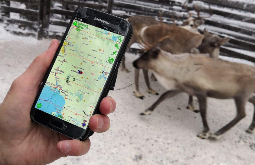 Internetes rénszarvas-pásztorkodás
