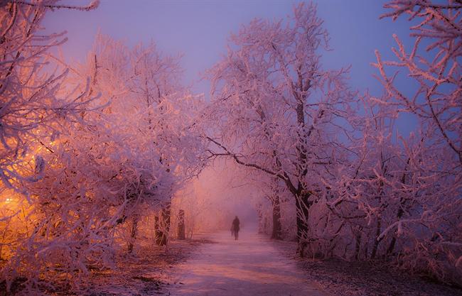 A nap képe: Tündérország