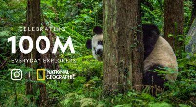 A National Geographic óriási sikere az Instagramon