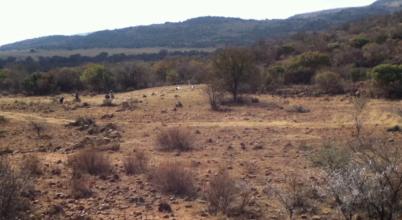 Elveszett település árulkodik Dél-Afrika múltjáról