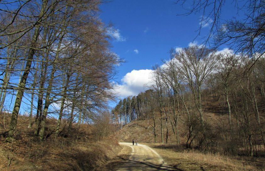 Aktív tavaszi kikapcsolódás kezdőknek és haladóknak