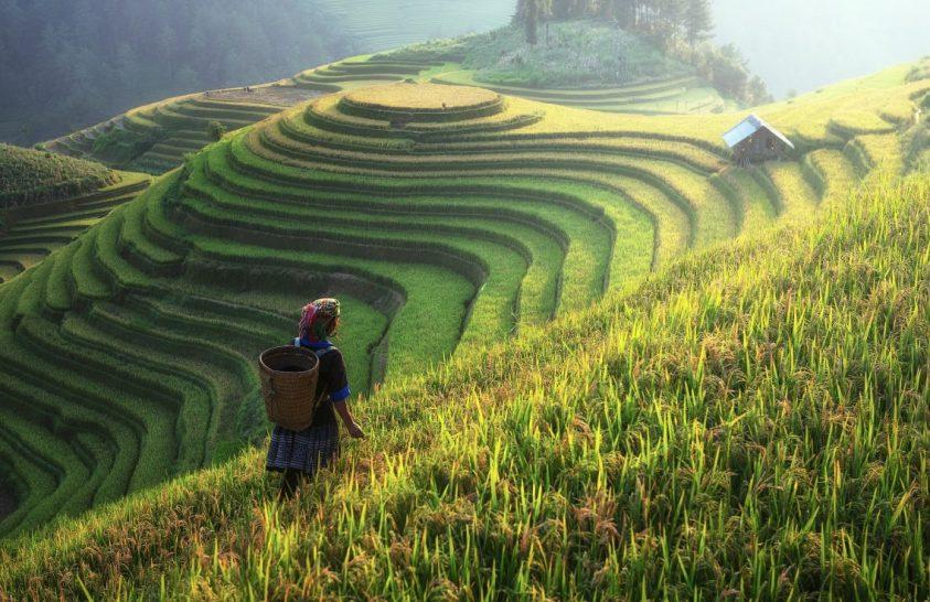A vízminőség helyreállítása Kínában