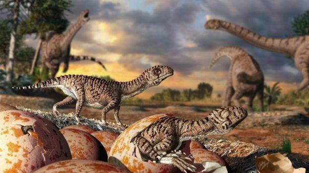 A legidősebb dinoszaurusztojások héjszerkezete