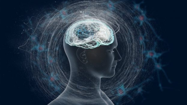 Három tévhit agyunk működéséről