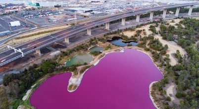 Miért változott rózsaszínűvé ez az ausztrál tó?