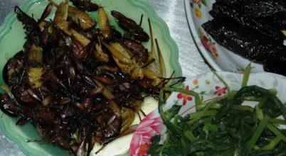 Vajon a szöcske natúr sütve vagy magyarosan finomabb?