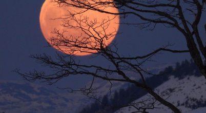A nap képe: Este az Alpokban,1500m-en