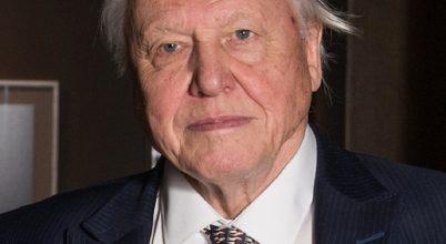 Hatásos Attenborough műanyag elleni harca
