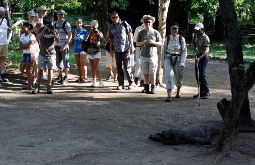 Komodo-sziget is turistamentes lehet egy időre