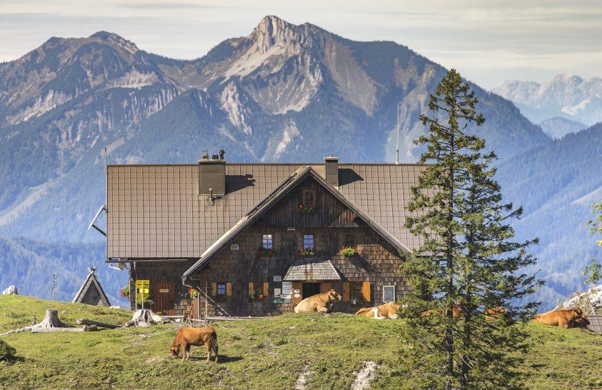 Alpesi kikapcsolódás minden korosztálynak