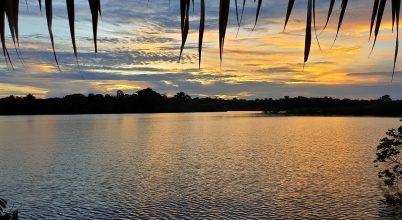Barátságos majmok és rózsaszín delfinek közt az Amazonas őserdejében