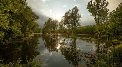 A nap képe: Gemenci árvíz