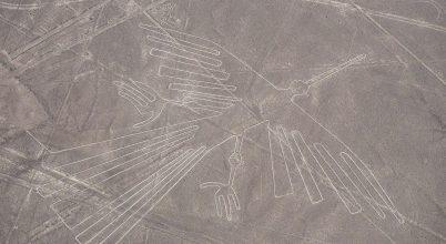 Újabb eredmények a Nazca-vonalak madarairól