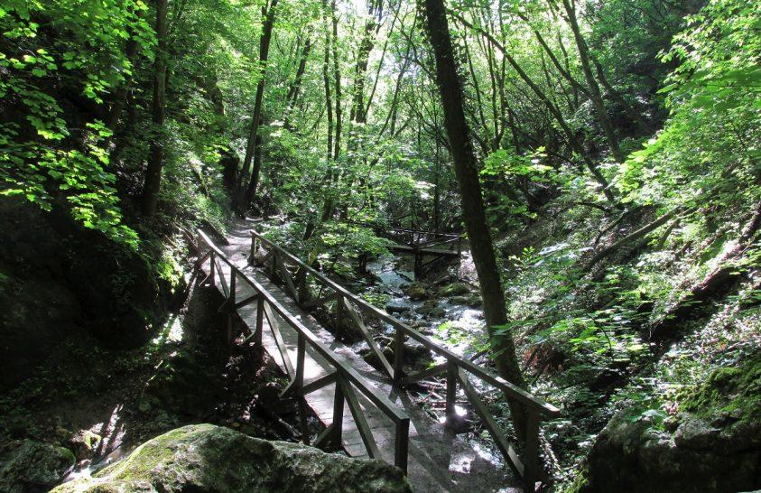 Hűsítő szurdoktúra a Pilisben, kilátással a Dunazug-hegységre