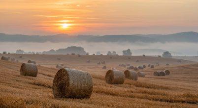 A nap képe: Nyári reggel vidéken