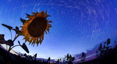 A nap képe: Dimenzió