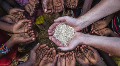 A bél mikrobáinak helyreállítása segítheti az éhező gyerekek fejlődését