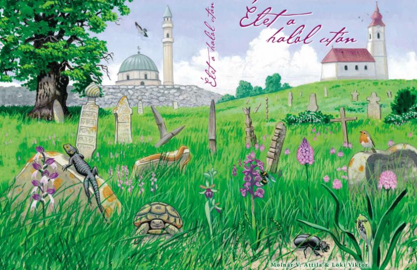 A temetők élővilága