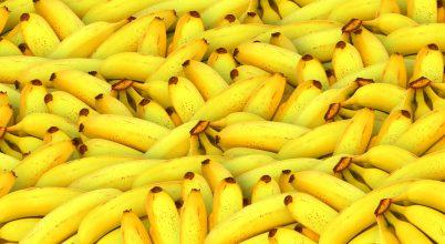 Elérte Amerikát a banánvész