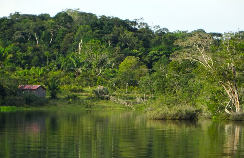 Törzsi vezetővel végeztek a bányászok Amazóniában