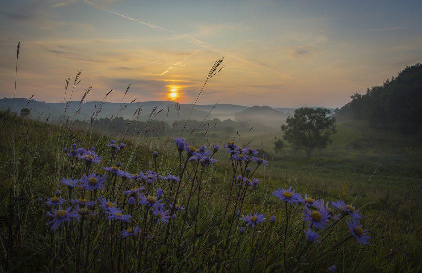 A nap képe: Egy újabb reggel